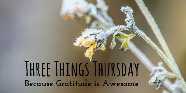 three-things-thursday-winter-image-nerd-in-the-brain